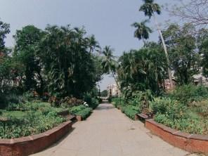 Horniman Garden