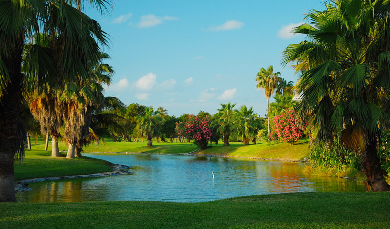 grand-cancun-oasis-2014-19