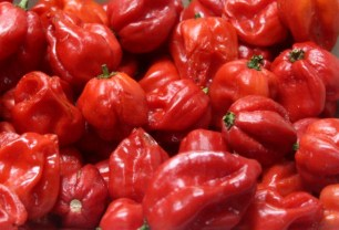 Mercado Central de BH Pimentas