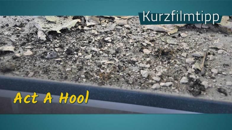 Kieselschrott, dazu der Schriftzug: Kurzfilmtipp, Act A Hool