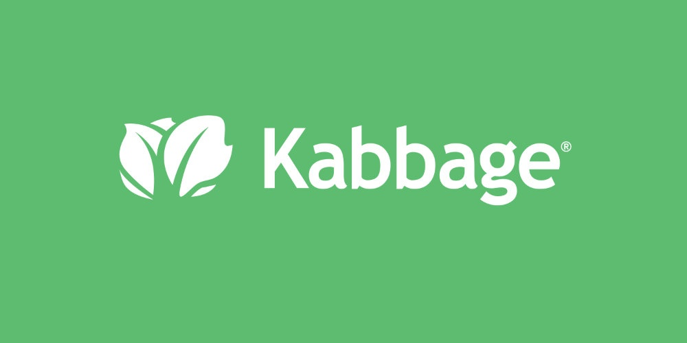 kabbage, small business loan