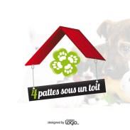 creation-de-logo-fondation-animale