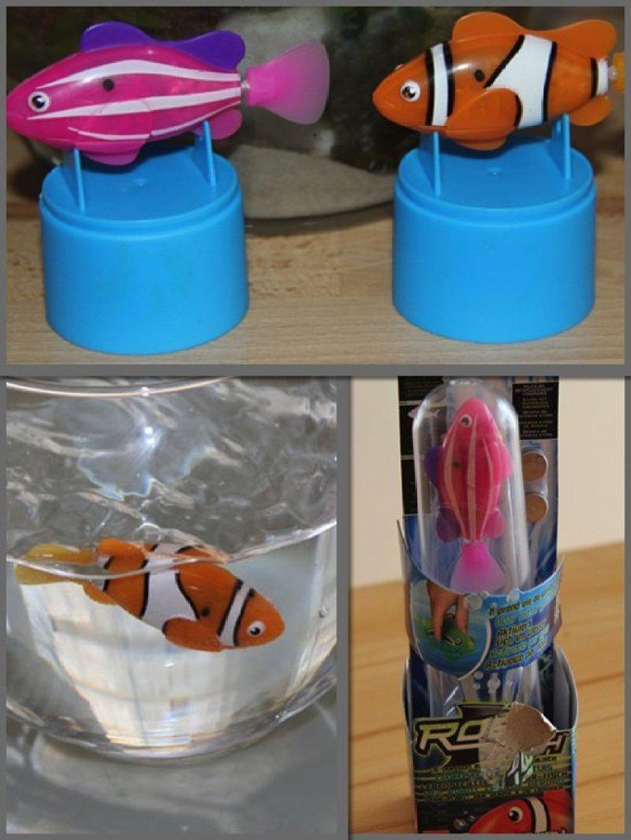Kennt ihr schon den Robo Fish - hier ein Video von mir
