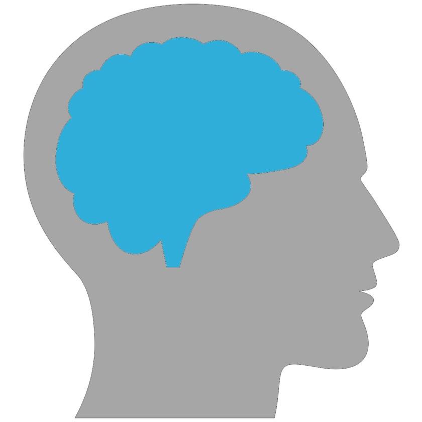 Foto icoon hersenen concentratie