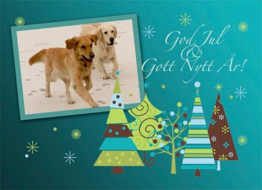 God jul önskar Blomsterhundar