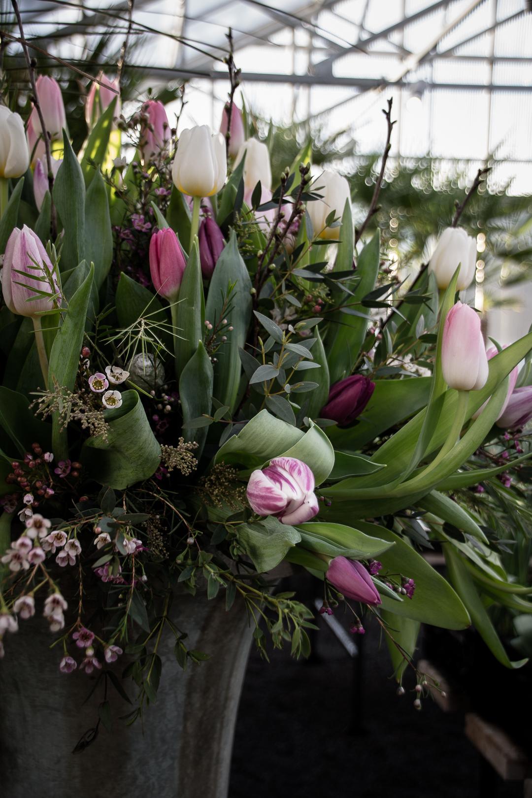 självplock tulpaner slottsträdgården ulriksdal