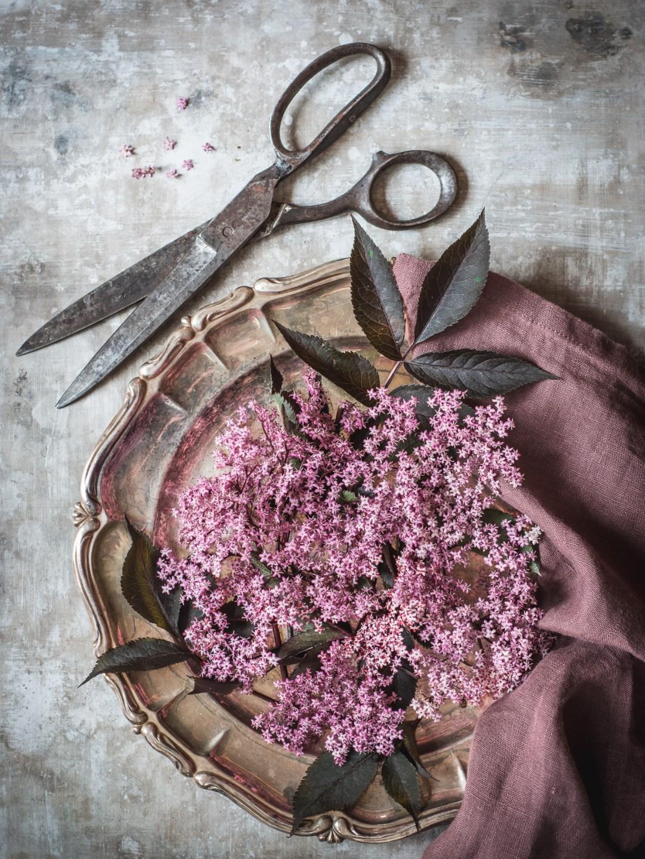 rosa fläder