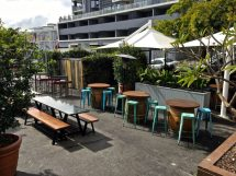 The downstairs beer garden/garage bar has 8 beers and 4 wines on tap!