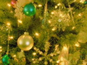 Christmas_blog_0161_2