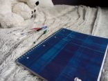 4 stylo bille - Bic Cristal - belu / vert / noir /rouge - 0€49 pièce / Cahier Clairefontaine (avec les pages qui se détachent trouée trop bien) - 5€59 Tout du furet