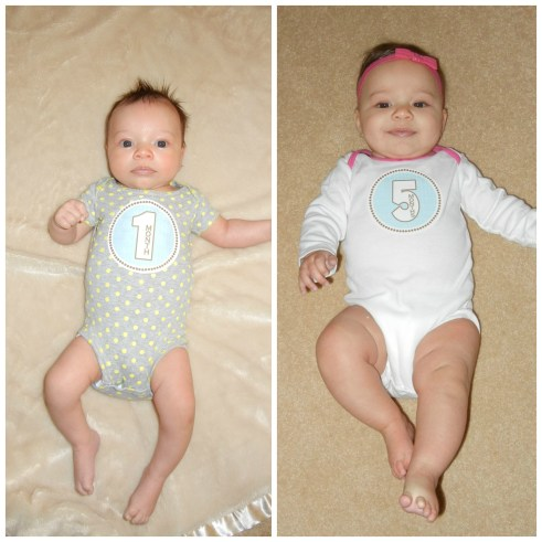 1 month to 5 month baby