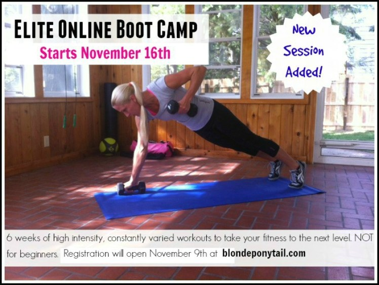 Elite Online Boot Camp_Nov 16
