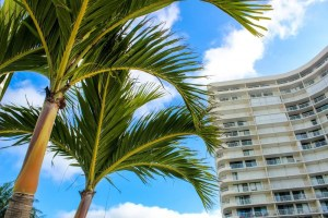 Beginners Guide to Marco Island