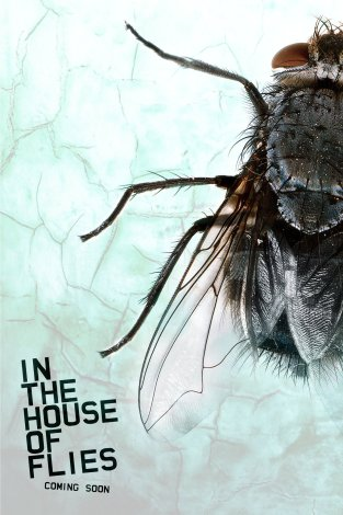 3-in-the-house-of-flies
