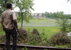 7-the-walking-dead-s2-ep3
