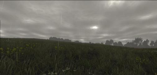 Survivor_2