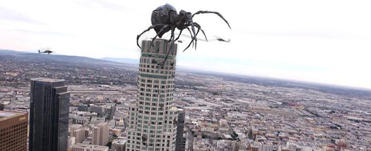 Arañas y Loros Big-ass-spider3