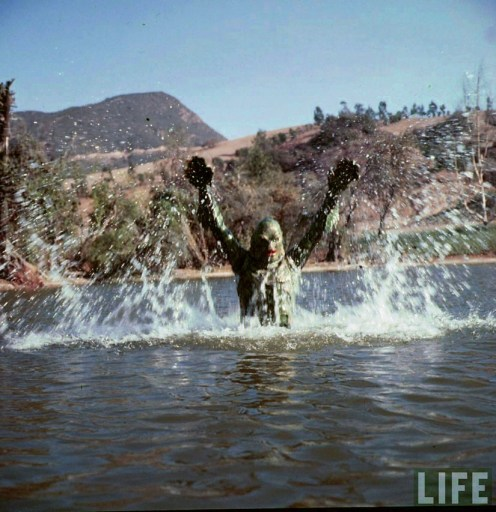 Creature_From_The_Black_Lagoon_Life_2_4_23_13