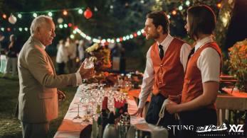 stung-4