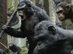 8-dawn-of-the-planet-of-the-apes