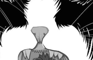 blackmetalcatbanner