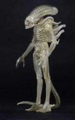 1300x-Concept_Alien1-644x1024