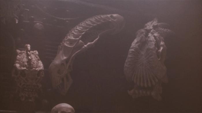 predator-2-skull