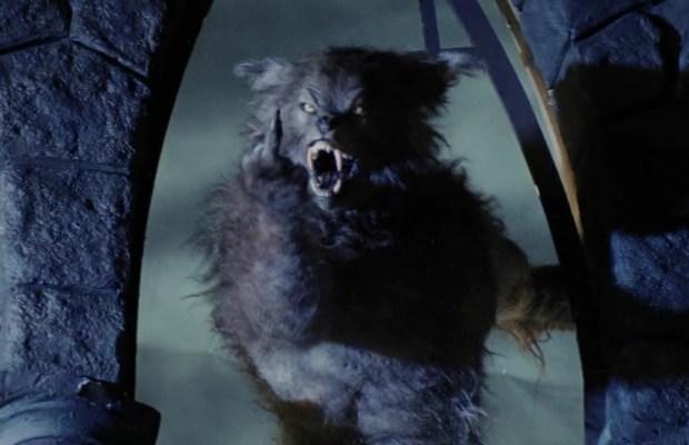 Cursed Werewolf