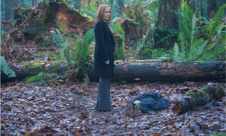 The X-Files 1108-3