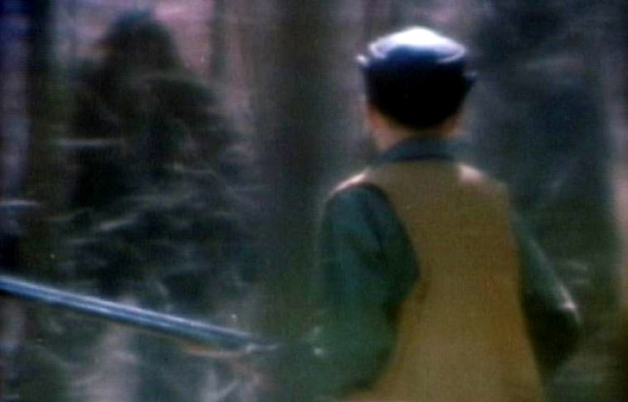 Stomping Around the Woods: 6 of the Best Bigfoot Movies