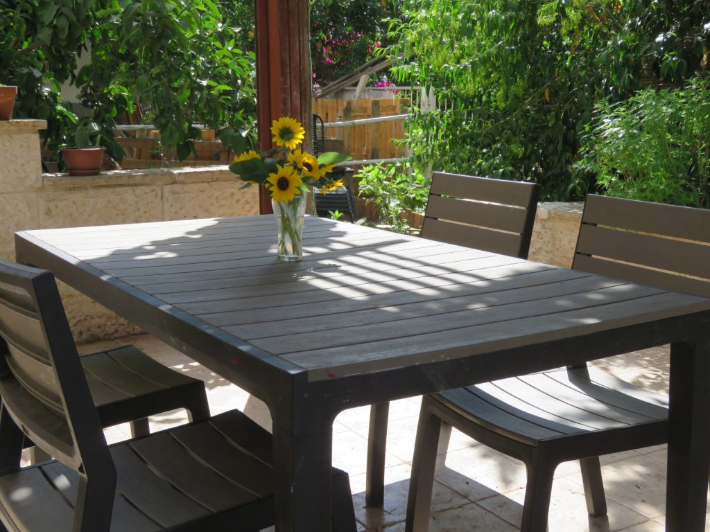 Our outdoor dining area... after I scrubbed it for the photographer