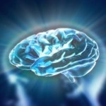 Nourishing Memory and Brain Function