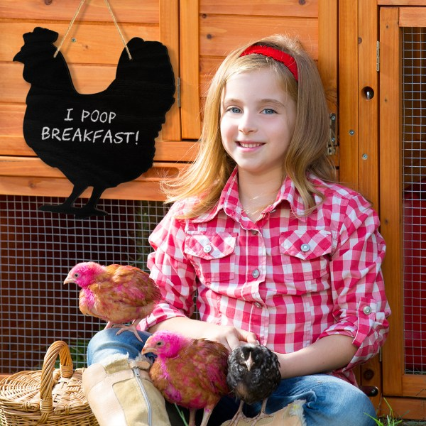 rustic chicken chalkboard - on a chicken coop with girl and chickens