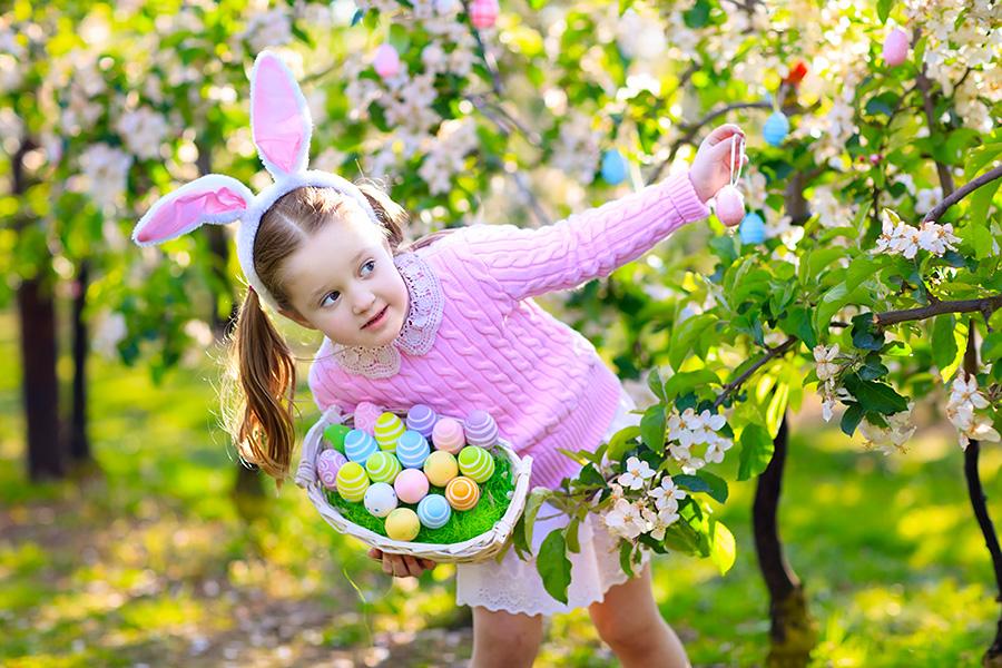 spring fresh flowers for Easter decor