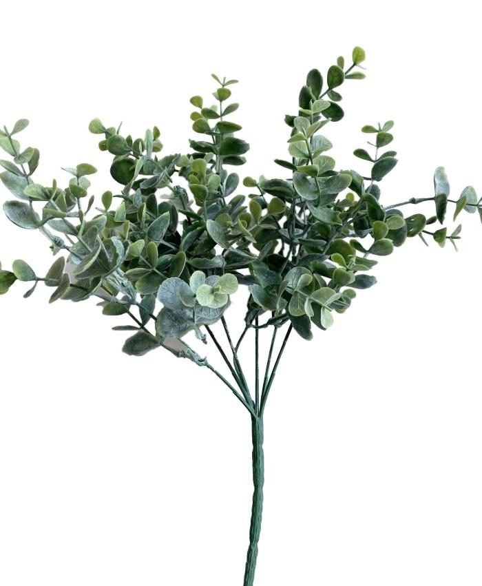 Short Stem Eucalyptus