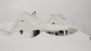 stuck, trapped, snow storm, stuck inside