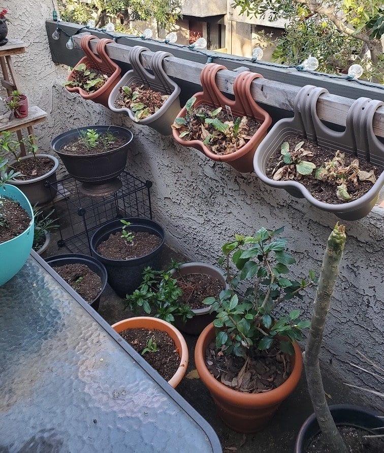 https://bloominganomaly.com/gardening-shelves/
