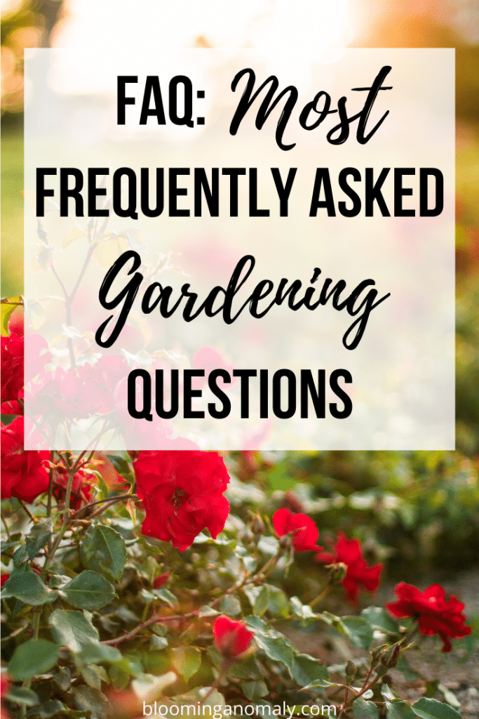 most frequently asked gardening questions