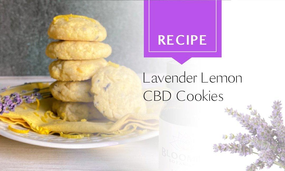 Lavender Lemon CBD Sugar Cookies Recipe