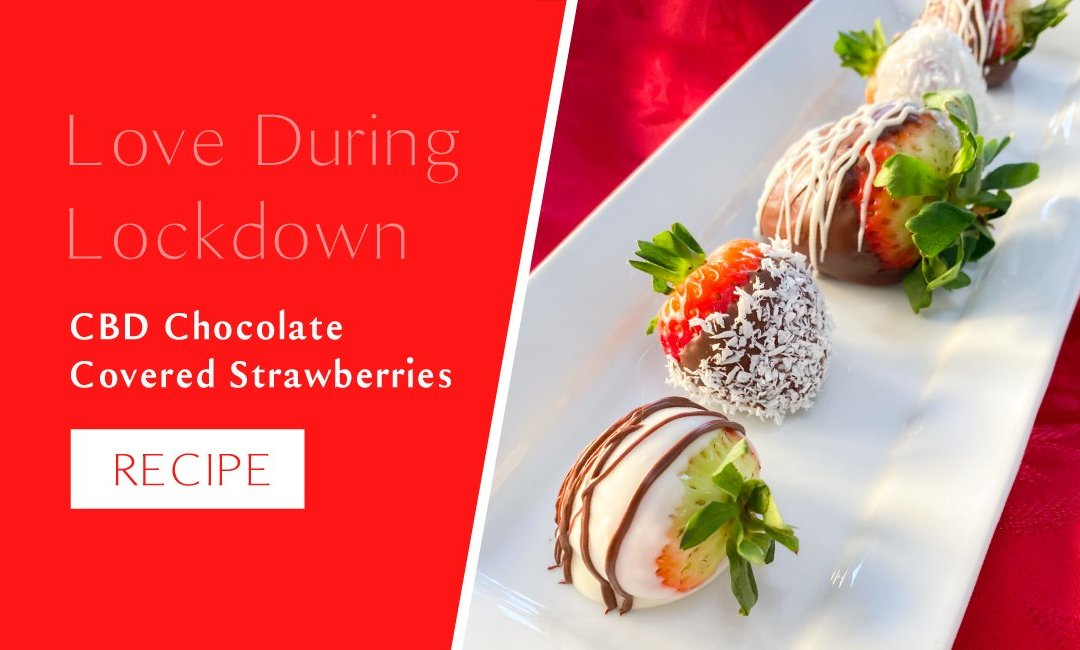 CBD Chocolate Covered Strawberries Recipe