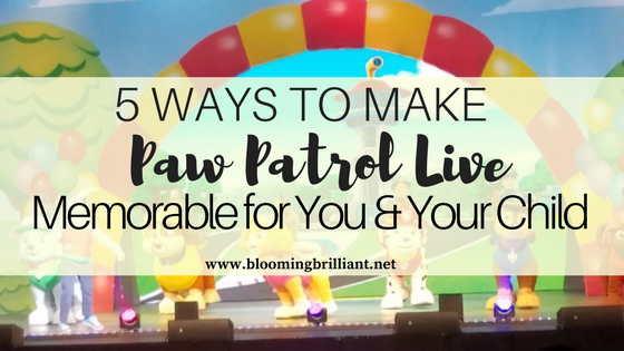 5 ways to make Paw Patrol Live memorable for you and your child.