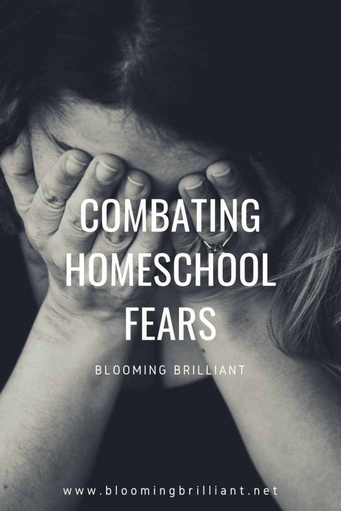 Pinterest Pin Combating Homeschool Fears