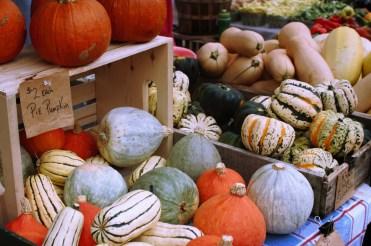 pumpkins-and-squash_fotor