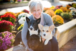 A Joyful Companion Pet Sitting & Dog Walking, LLC