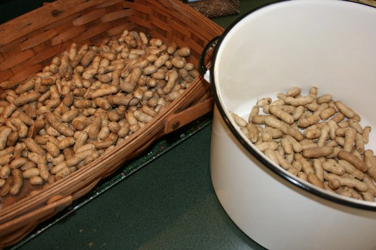 southern peanuts