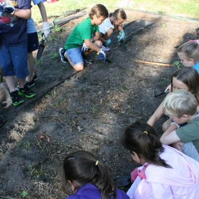 Friends Planting Friends in the Garden