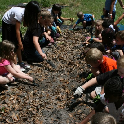 Planting Peanuts