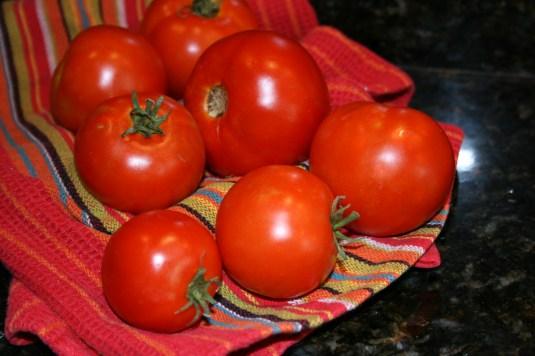 my salsa tomatoes