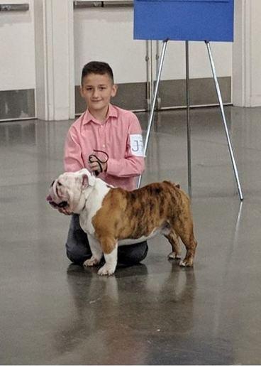 Junior Handling Mason & Rolo
