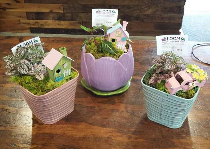 Spring Potted Containers